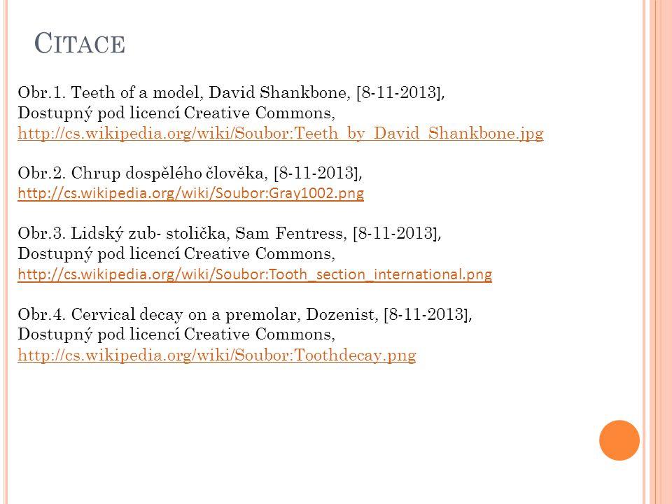 Citace Obr.1. Teeth of a model, David Shankbone, [8-11-2013],